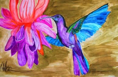 Kolibri by Adrien Asselborn